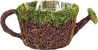 "Super Moss (55260) 7"" Deco Watering Can Planter Basket, Medium"
