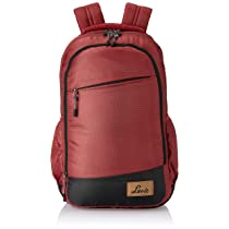 Lavie Sport 39L Laptop Backpack for Men & Women   College Bags