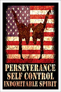 Motivational Wall Art - Perseverance Self Control Indomitable Spirit, 12x18 Inch Poster, Jiu Jitsu Karate Taekwondo Martial Arts Decor, Decorations for Gym, Bedroom, Office