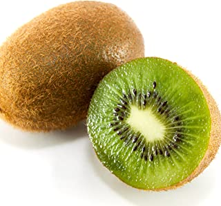Saanichton Female Kiwi Actinidia Deliciosa Live Plant
