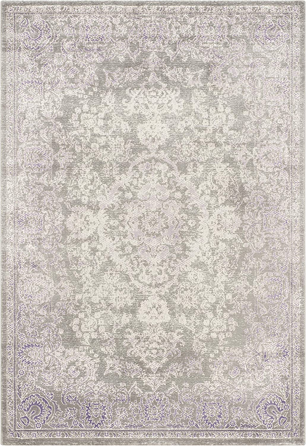 Safavieh Passion Collection PAS402G Directly managed store Vintage New York Mall Distressed Area Rug