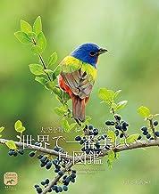 表紙: 世界で一番美しい鳥図鑑:大空を舞い、 木々に水辺に佇む (ネイチャー・ミュージアム) | すずき 莉萌