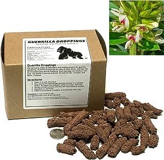 Round-headed Bush Clover Guerrilla Droppings - Seed Pellets for Guerrilla Gardening (Lespedeza capitata)