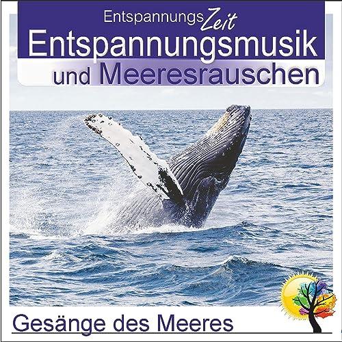Entspannungsmusik meeresrauschen