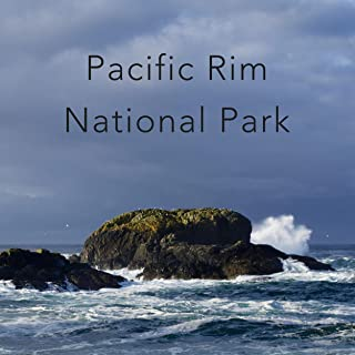 Ocean Waves at Pacific Rim National Park, Vancouver Island, Canada