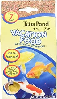 tetra pond vacation food