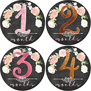 Mumsy Goose Month Stickers Baby Girl Milestone Stickers 1-12 Months Girl 1st Year Stickers Floral Chalkboard