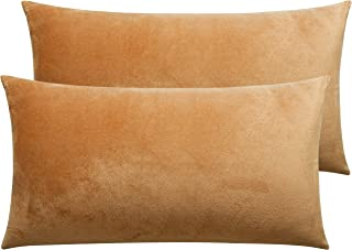 NTBAY Solid Velvet King Pillowcase, 2 Packs Super Soft and Cozy Luxury Zippered Pillow Cases, 20 x 36 Inches, Camel