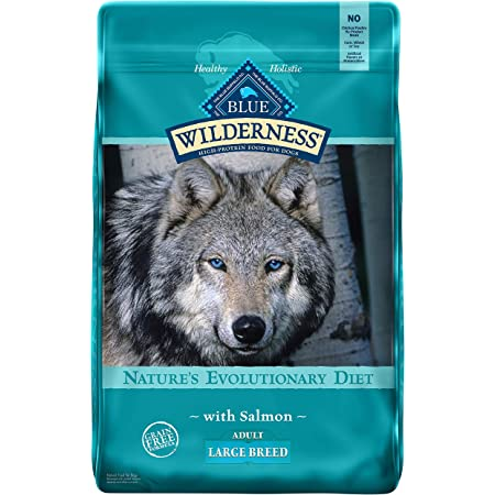 Blue Buffalo Wilderness High Protein Grain Free Natural Adult Large Breed Dry Dog Food, Salmon 24-lb