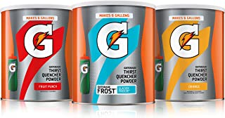 Best gatorade g2 powder bulk Reviews