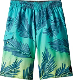 Rip Curl Kids - Mason Rockies Volley Boardshorts (Big Kids)