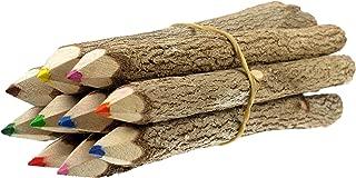 TropicaZona Branch and Twig Pencils, 5