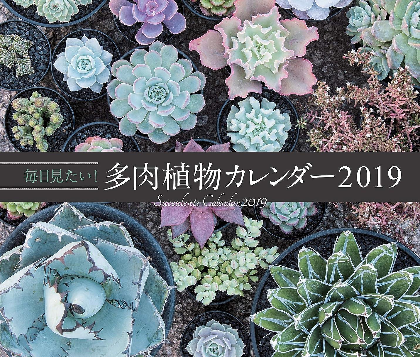 雰囲気性交効率毎日見たい! 多肉植物カレンダー2019 ([カレンダー])