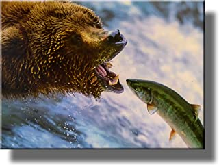 Grizzly Bear Catching Fish Picture on Acrylic, Wall Art Décor, Ready to Hang!