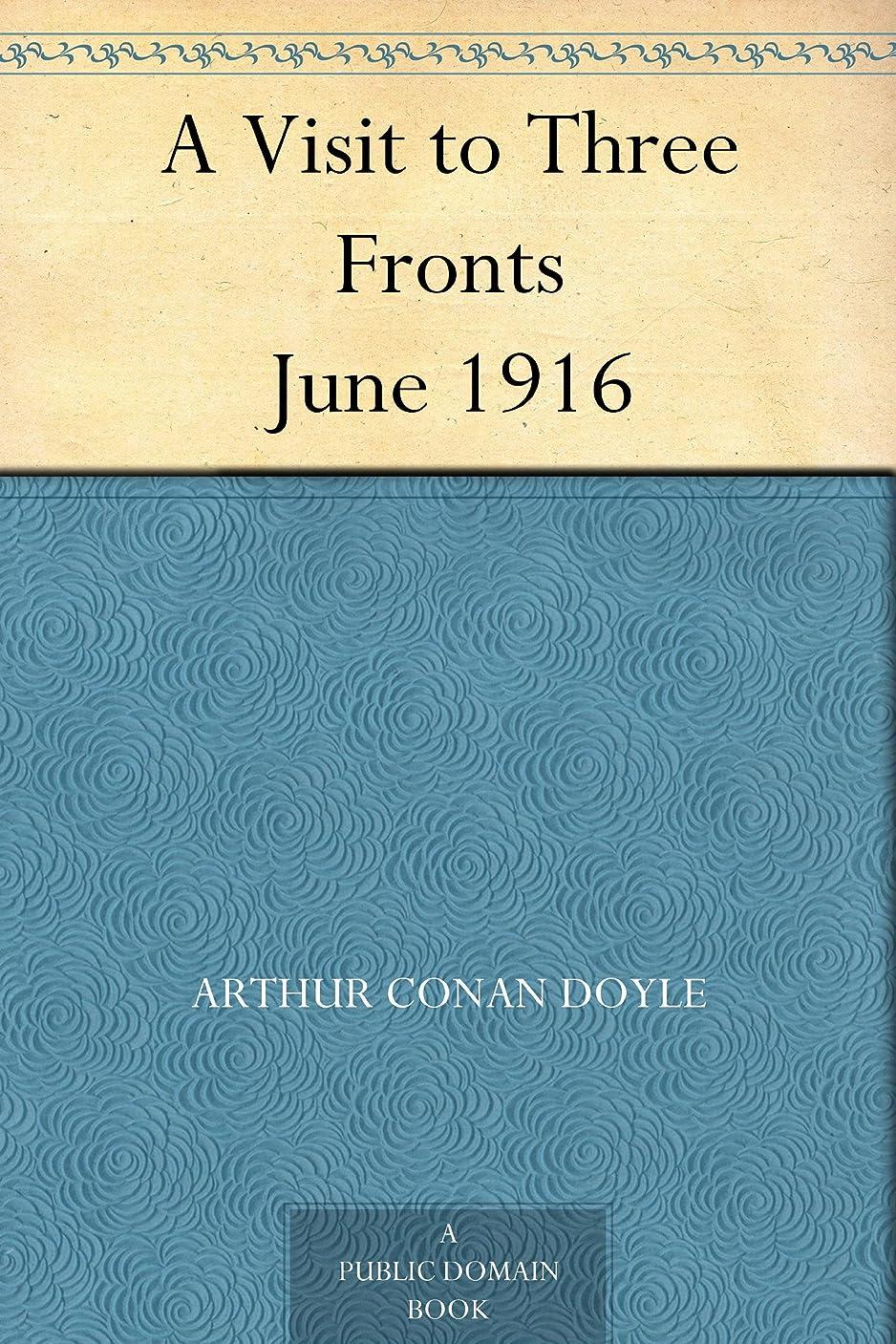 口ひげ目を覚ます兄弟愛A Visit to Three Fronts June 1916 (English Edition)