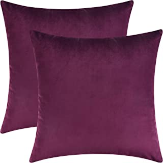 Mixhug Set of 2 Cozy Velvet Square Decorative Throw Pillow Covers for Couch and Bed,..