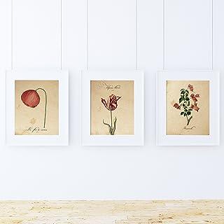 Pack de láminas Red One. Tres láminas tamaño A4. Posters