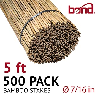 Bond Manufacturing N510 5-ft x 7/16-in Diameter Bamboo Stakes, 250-pack, Natural