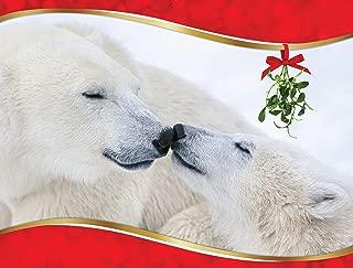 Eskimo Kisses Polar Bear Christmas Cards