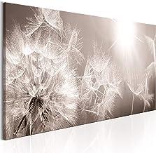 Leinwandbild Kunst-Druck 140x70 Bilder Blumen /& Pflanzen Pusteblume