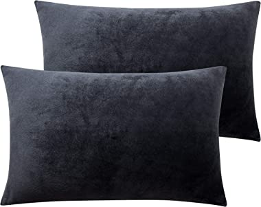 NTBAY Zippered Velvet Queen Pillowcases, 2 Pack Super Soft and Cozy Luxury Solid Color Pillow Cases, 20 x 30 Inches, Charcoal