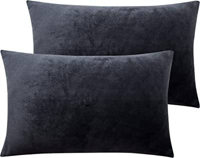 NTBAY Zippered Velvet Queen Pillowcases, 2 Pack Super Soft and Cozy Luxury Solid Color Pillow Cases, 20 x 30 Inches, Charcoal Grey