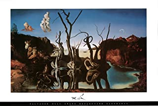 Best Salvador Dali - Swans Reflecting Elephants Art Print Poster - 36x24 Review