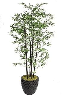Vintage Home Laura Ashley VHX106205 78-Inch Black Bamboo Tree in 16-Inch Fiber Stone Planter