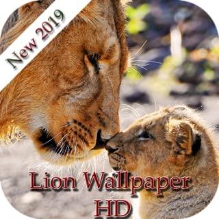 Best lion wallpaper hd Reviews