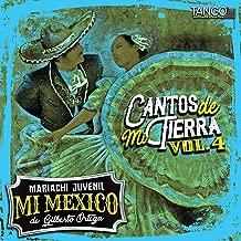 Cantos De Mi Tierra Vol. 4