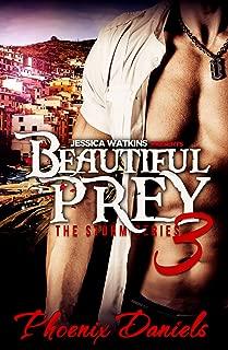 Beautiful Prey 3: The Storm Series: BWWM Romance