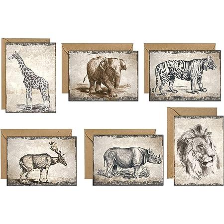48 tarjetas de felicitación en blanco ecológicas dibujadas por un artista…