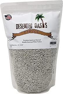Premium American White Pumice for Cactus Succulent Soil (3 Quart, 1/8