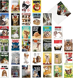 Best Pets Collection - 36 Funny Assorted Blank Note Cards with Envelopes (4.63 x 6.75 Inch) - Adult Greeting Card Set for Dog, Cat, Animal Lovers AC6654OCB-B1x36