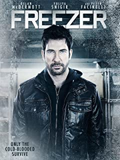 prima chest freezer
