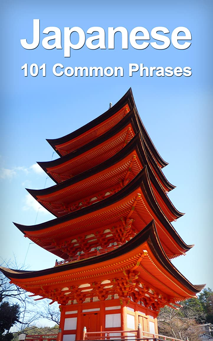 窓を洗う実現可能多用途Japanese: 101 Common Phrases (English Edition)