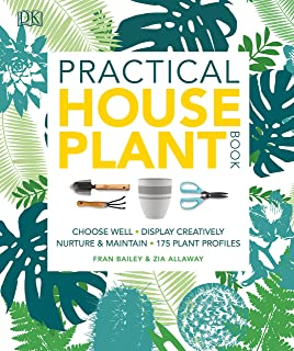 Best rubber plant price Reviews