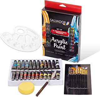 Salvador Acrylic Paint Set - 24 Colors, Artist Paint Kit with Premium Paint Brushes, Mixing Knife, Paint Pallet and Sponge – Professional Painting Set Arts and Crafts Supplies for Adults and Kids