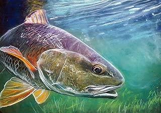 Redfish Wall Art Print, Redfish Fishing Artwork Gift, Red Drum Pastel Painting Print, Choice of Sizes Hand Signed Fishing Print By Jack Tarpon