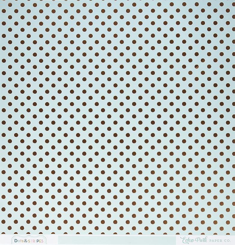 Echo Park Paper DS16036 Foiled Dots & Stripes Cardstock (15 Sheets Per Pack), 12
