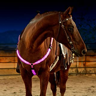 horse riding safety lights