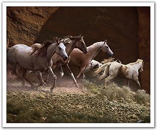 JP لندن poslt2196ustrip Lite قابلة للإزالة ملصق حائط من الفينيل ملصق جداري Rolling Thunder Wild Stallion الحصان Stampede ...