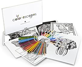 Crayola Color Escapes Coloring Pages & Pencil Kit, Nature Edition, 12 Premium Pages, 12 Fine Line Markers, 50 Colored Pencils, Adult Coloring, Art Activity Set