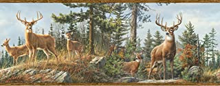 Best whitetail deer wallpaper border Reviews