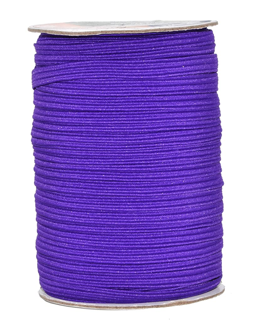 Mandala Crafts Colored Polyester Rubber Braided Flat Elastic Stretch Band Cord Spool Roll for Sewing Clothes Waistbands (1/4 inch 6mm 50 Yards, Purple)