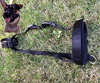 Aucanus Gentle Muzzle for Dogs,Nylon Dog Muzzle for Small,Medium,Large Dogs, Soft Neoprene Padding–Anti-Shedding,Prevent from Biting,Barking and Chewing,Adjustable Loop