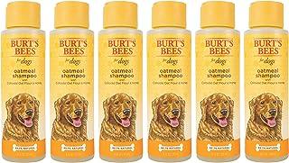 Burt's Bees All Natural Oatmeal Shampoo for Dogs   Made with Colloidal Oat Flour and Honey   Moisturizing Oatmeal Dog Sham...