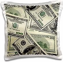 3D Rose pc_63043_1 100 Dollar Bill Pattern Pillow Case, 16 x 16