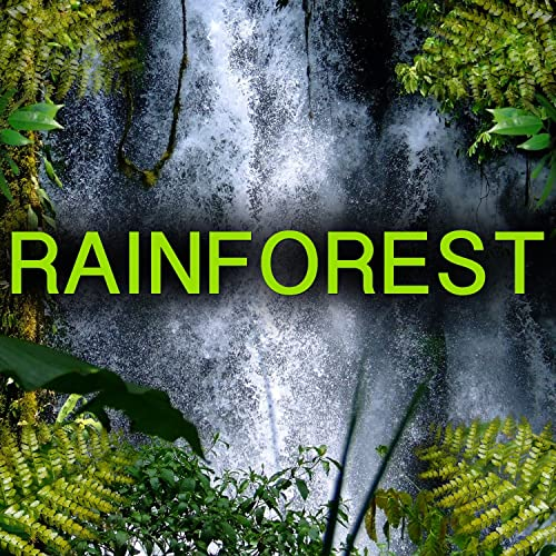 Rainforest Animal Sounds (Jungle Animals) by Nature Sound on