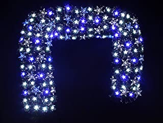HOLIDAY STUFF Twinkling Stra Fiber Optic Christmas Wreath Pre-lit with Blue and White LED Lights